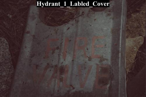 Hydrant 1 Labled Cover