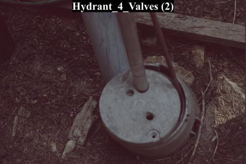 Hydrant 4 Valves (2)