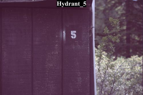 Hydrant 5